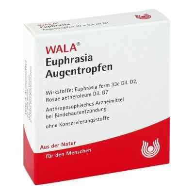 Euphrasia Augentropfen  bei Apotheke.de bestellen
