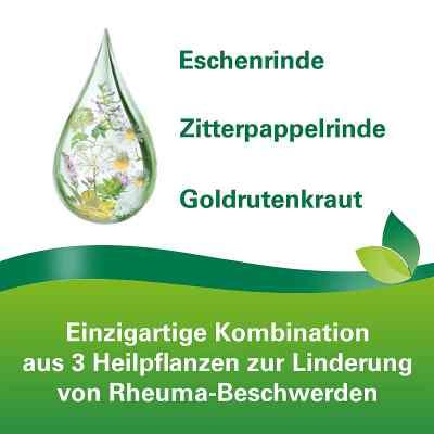 Phytodolor Tinktur  bei Apotheke.de bestellen