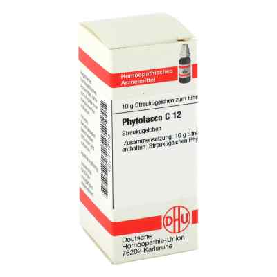Phytolacca C12 Globuli  bei Apotheke.de bestellen