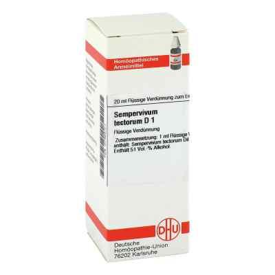 Sempervivum Tect. D1 Dilution  bei Apotheke.de bestellen