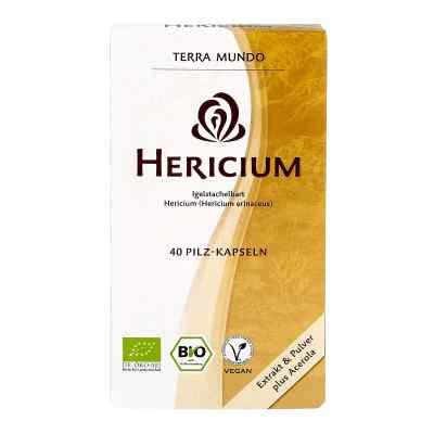 Hericium Vitalpilz Bio Terra Mundo Kapseln  bei Apotheke.de bestellen
