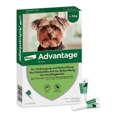 Advantage 40 für Hunde Lösung