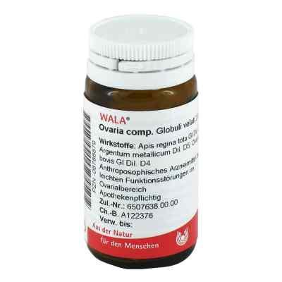 Ovaria Comp. Globuli  bei Apotheke.de bestellen