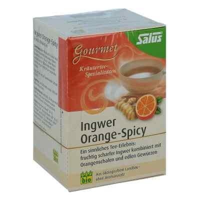 Ingwer Orange Spicy Tee Salus  bei Apotheke.de bestellen