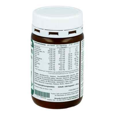 Beta Carotin 8 mg Bräunungskapseln  bei Apotheke.de bestellen