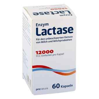 Lactase 12000 Fcc Kapseln