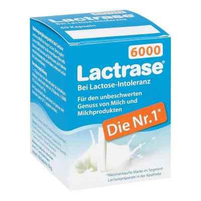 Lactrase 6.000 Fcc Kapseln  bei Apotheke.de bestellen