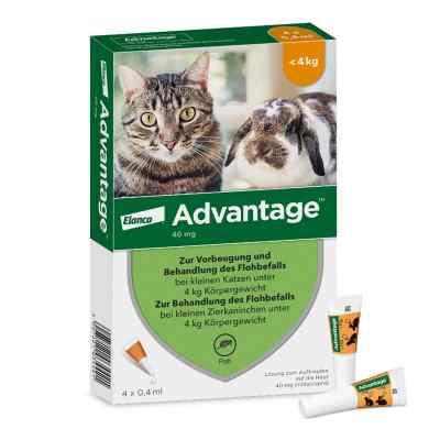 Advantage 40 mg für kl.Katzen und kl.Zierkaninchen  bei Apotheke.de bestellen