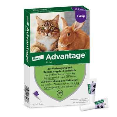 Advantage 80 mg für gr.Katzen und gr.Zierkaninchen  bei Apotheke.de bestellen