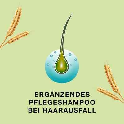 Priorin Shampoo bei Haarausfall und dünner werdendes Haar  bei Apotheke.de bestellen