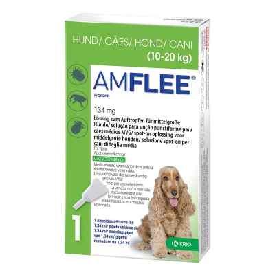 Amflee 134 mg Lösung zur, zum Auftropfen für mittelgr.Hunde  bei Apotheke.de bestellen
