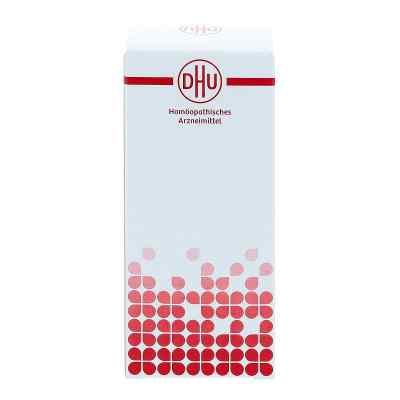 Hekla lava e lava D6 Tabletten  bei Apotheke.de bestellen