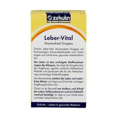 Zirkulin Leber-vital Mariendistel Dragees  bei Apotheke.de bestellen