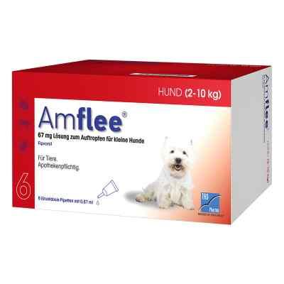 Amflee 67 mg Spot-on Lösung für kleine Hunde 2-10kg  bei Apotheke.de bestellen