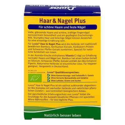Luvos Heilerde Bio Haar & Nagel Plus Kapseln  bei Apotheke.de bestellen