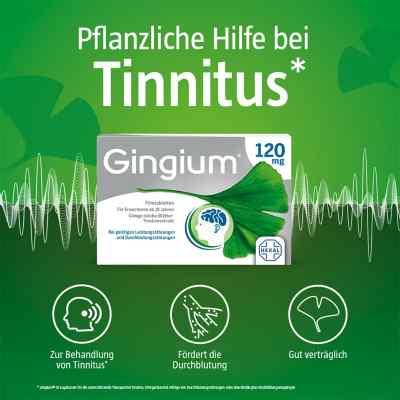 Gingium 120 mg Filmtabletten  bei Apotheke.de bestellen