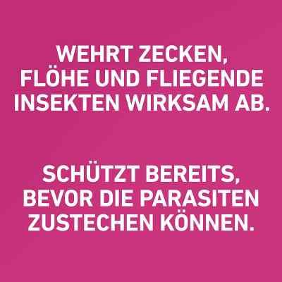 Frontline Tri-Act gegen Zecken, Flöhe bei Hunden (40-60kg)  bei Apotheke.de bestellen